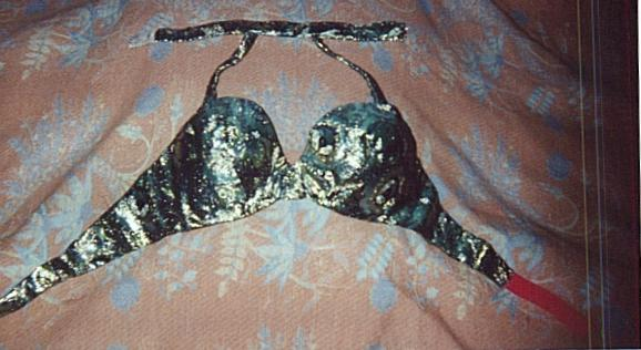 bra           covered in costume material